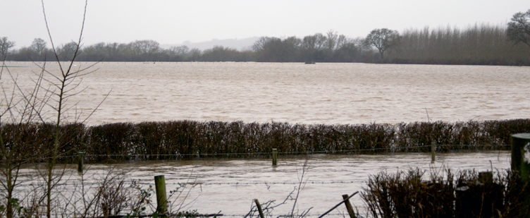 The Wettest Winter ever…
